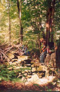 pulawy-2004-1